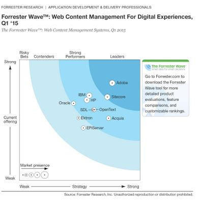 forrester wave web content management for digital customer experiences q1 2015