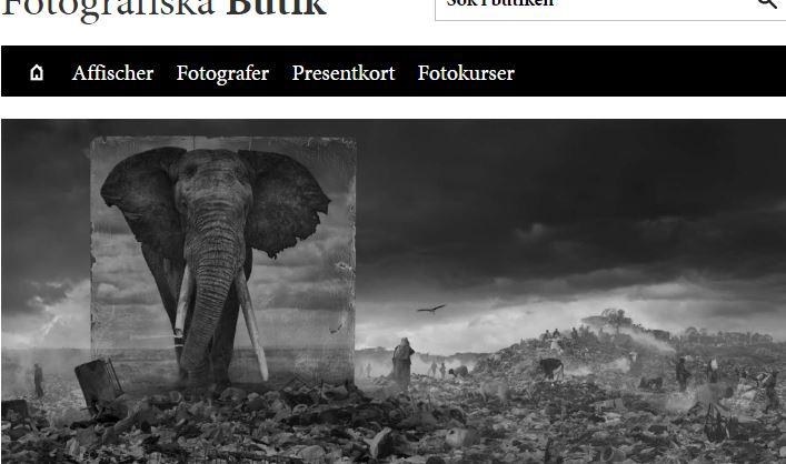 e-handel, Fotografiska Museet, Magento Community Edition 2, Ord&Bild Adobe Magento 2, E-handel, Nyheter, Wordpress