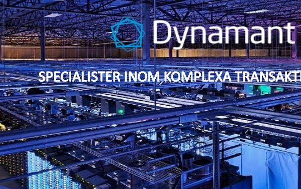 Dynamant, Satio Webbyrå Nyheter, SEO, Wordpress