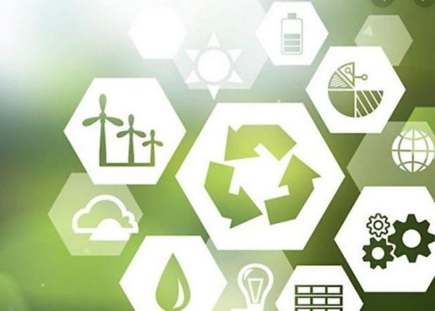 Bizzkit, hållbarhet CXM, E-handel, Nyheter