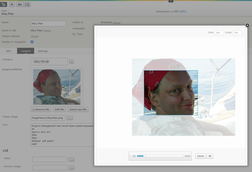DAM, Imagevault 4, meridium, QBank DAM, Episerver, Play-kanal / Multimedia